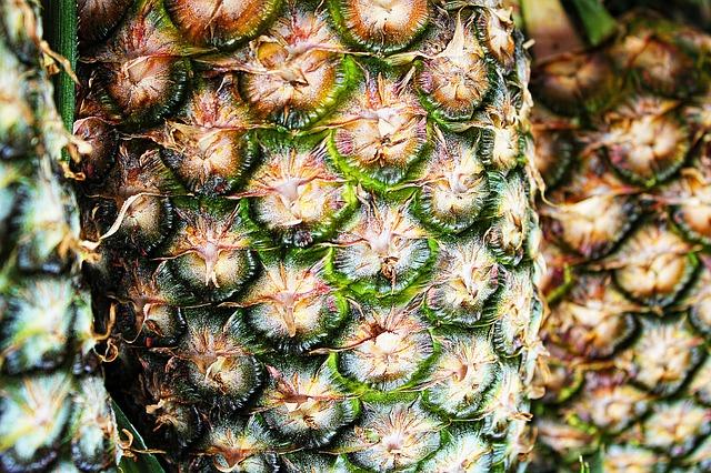 ananas zblízka